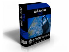 Web Auditor Plus